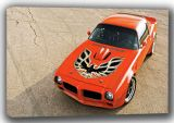 1976 Pontiac Firebird Trans Am. Classic Car Canvas. Sizes: A4/A3/A2/A1 (001362)